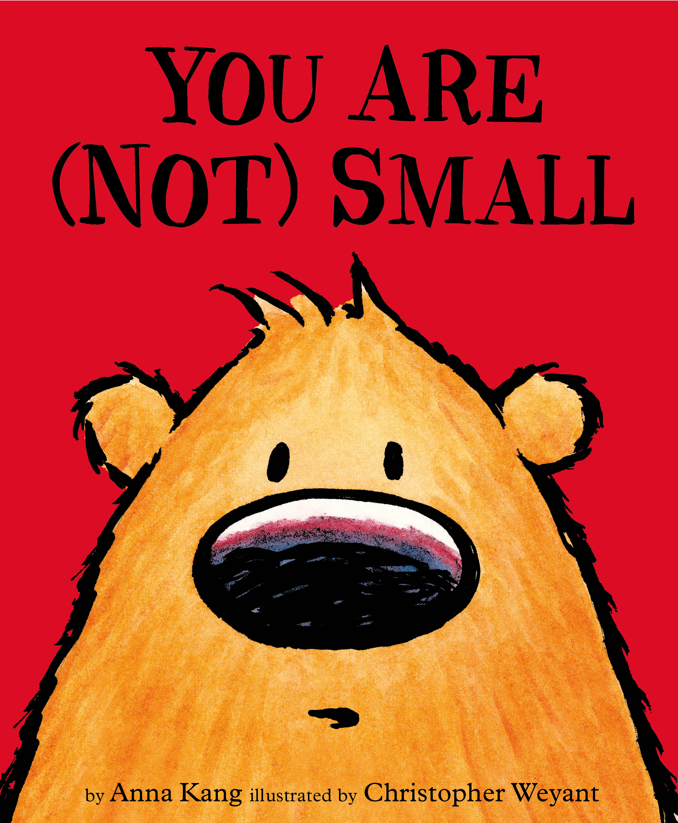You Are Not Small By Chris Weyant Books Hachette Australia