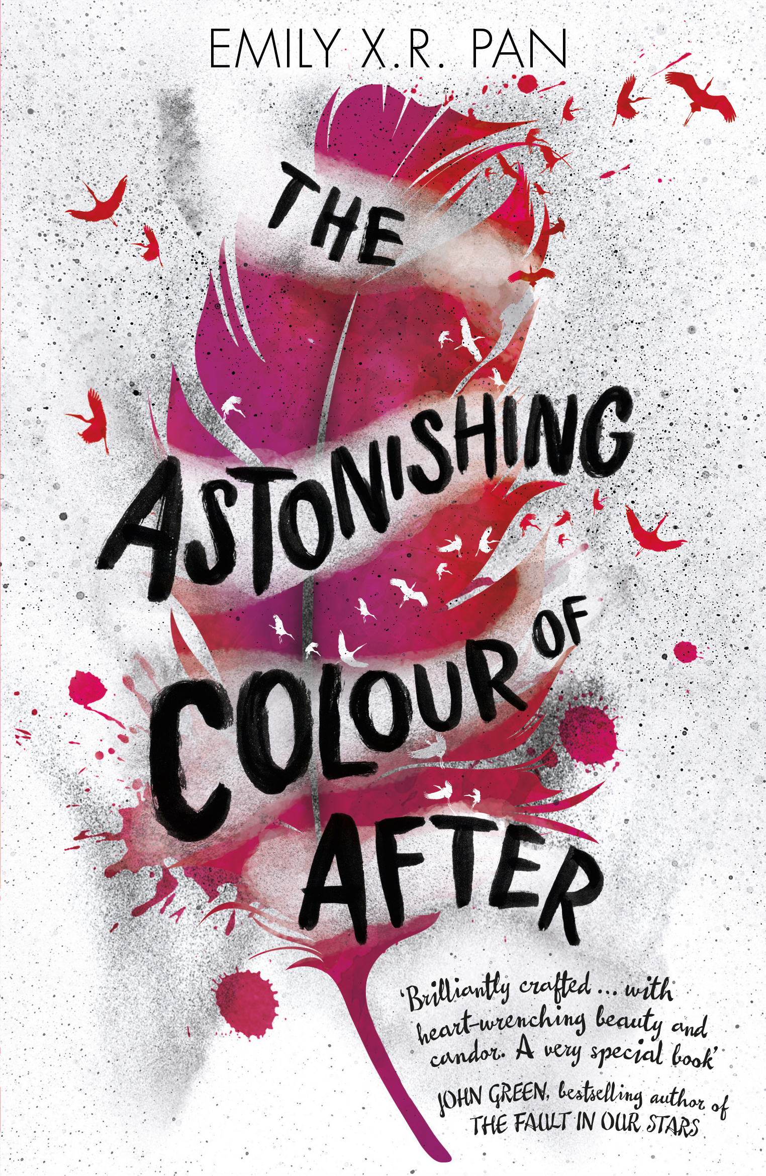Image result for the astonishing colour of After cover