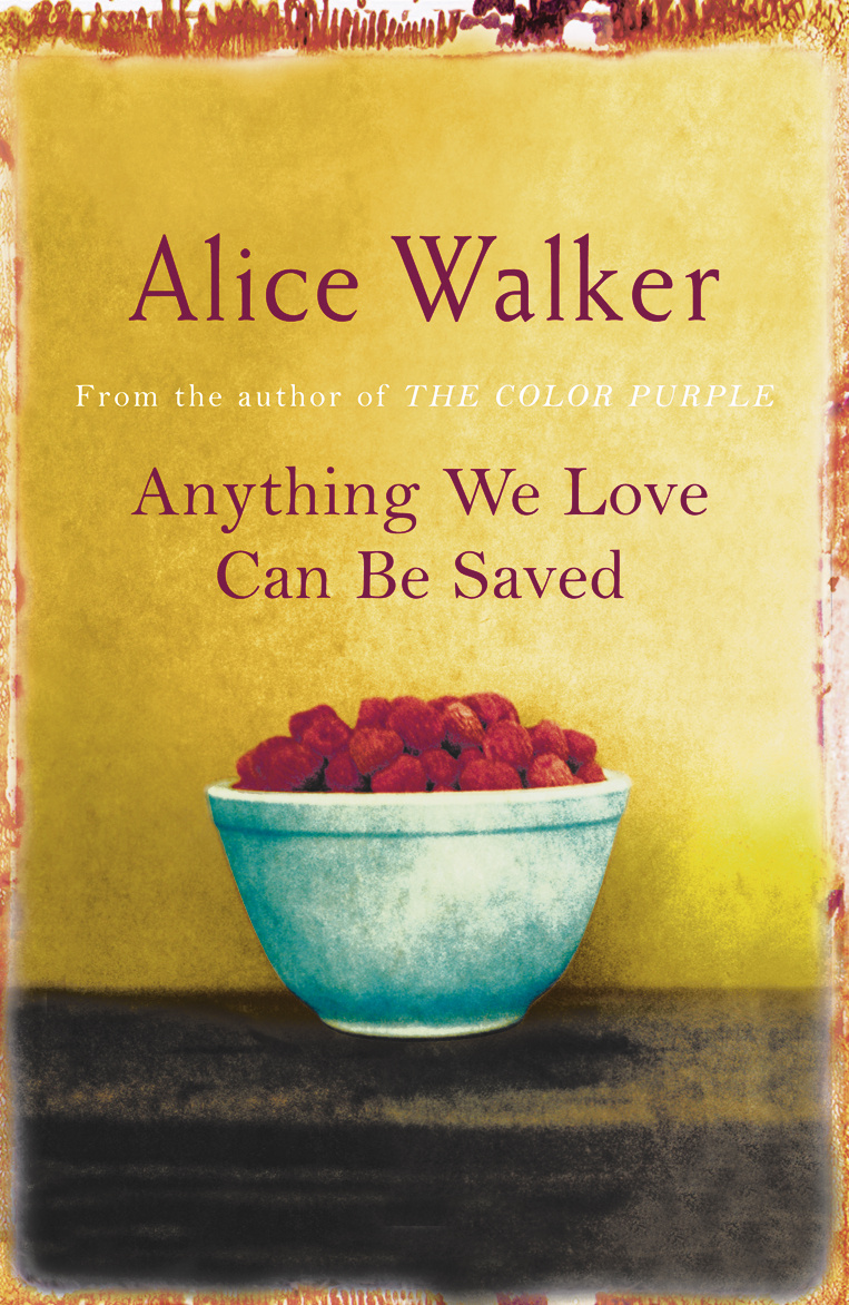 everyday use by alice walker essay ideas