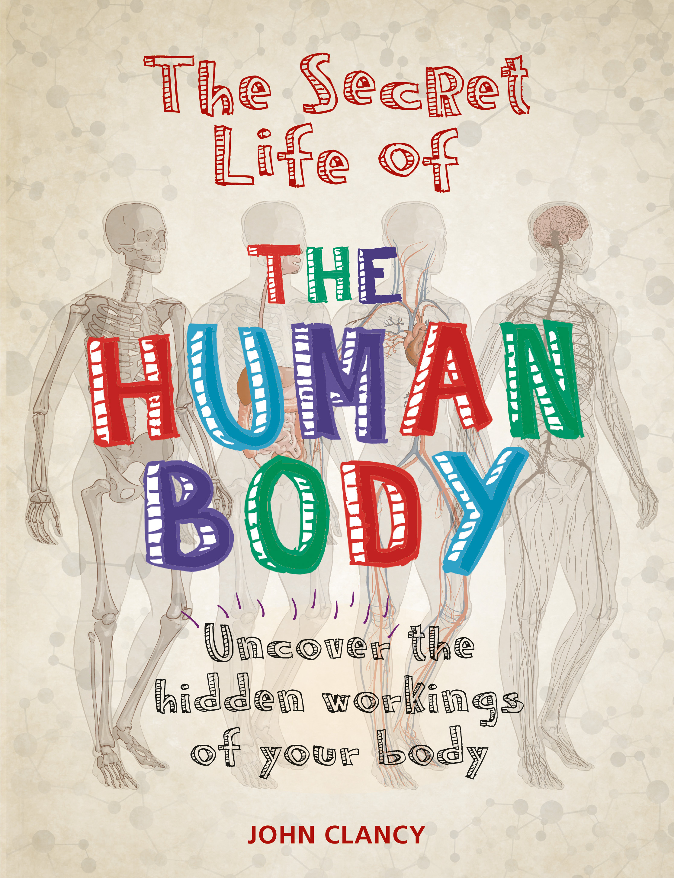 The Secret Life Of The Human Body By John Clancy Books Hachette